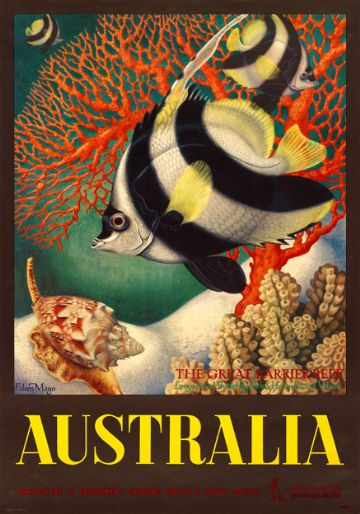 The Great Barrier Reef, Longspined Butterfly-fish & Heron Island Volute, Australia. Vintage Travel poster